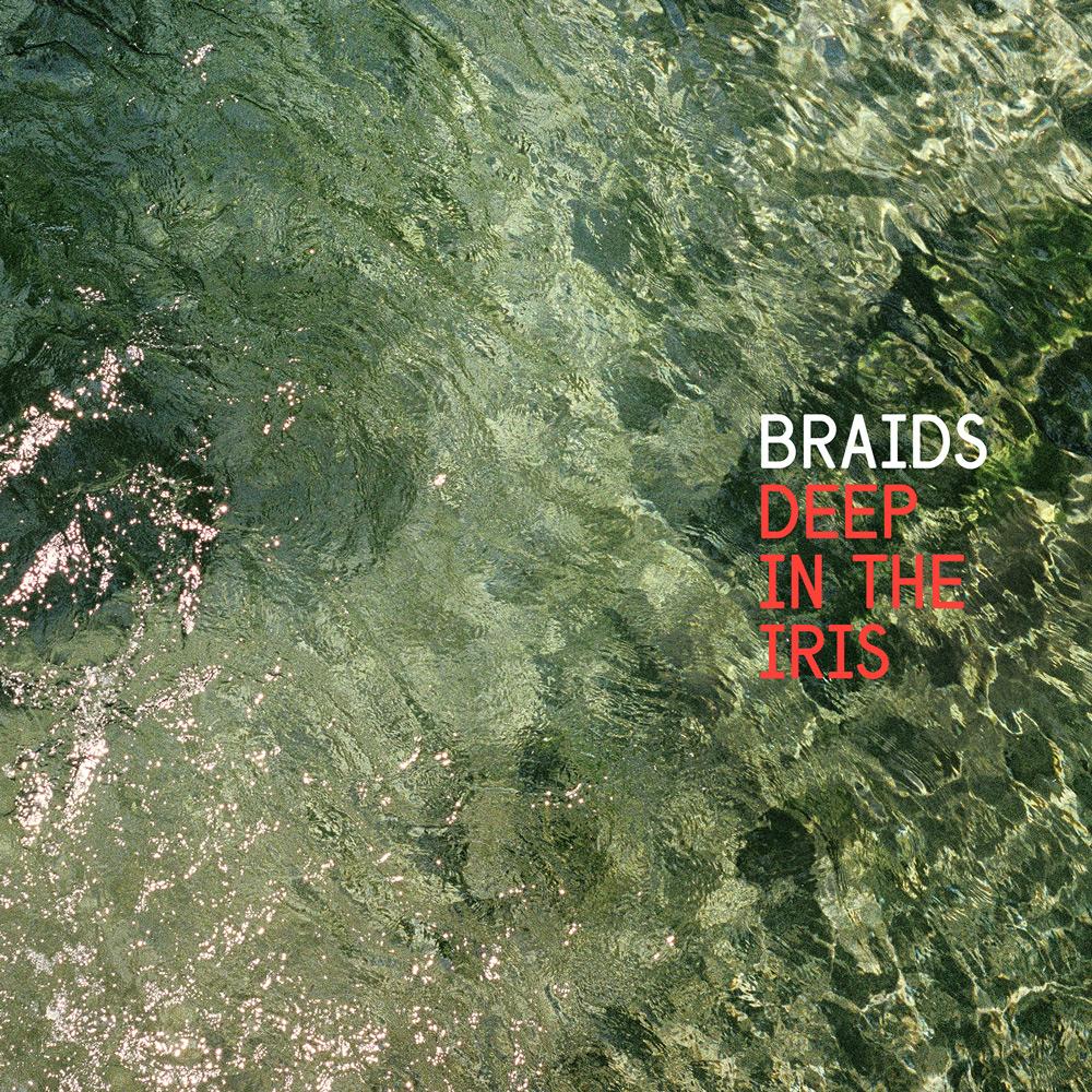 braids_deep-in-the-iris