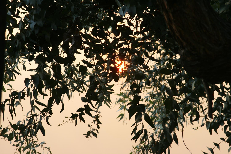 sand-fire-california_4262